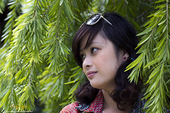 Brightly Sunday morning (Nguyn Hong (Mattoet)) Tags: hoangnguyen tamron1750 canon7d nguyenhoangarc mttot