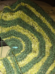 Cerasifera shawl