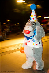 Thanks for noticin' (Alan Rappa) Tags: vacation costume orlando florida character disney parade winniethepooh characters wdw waltdisneyworld eeyore mk magickingdom halloweenparty 2010 mainstreetusa waltdisneyworldresort bootoyou mickeysnotsoscary
