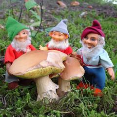 DSC04549 (tk.richel) Tags: mushroom vintage toys steiff elves tkrdesigns