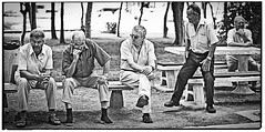 grumpy old men whatching old men playing boules (Jack Duchy) Tags: park old white playing man black sexy men face contrast canon jack 50mm book cool bokeh 14 grandfather croatia sigma grandpa chilling 7d mann oma granny regensburg parc opa mnner boule facebook duchy alte kroatien whatching botscha