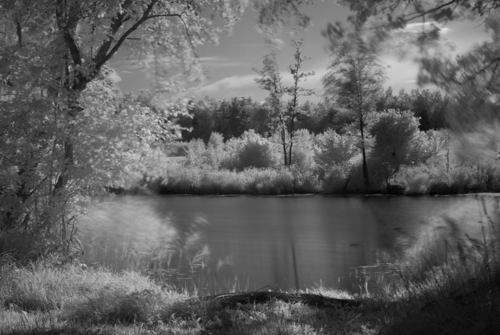 First try in infrared photography