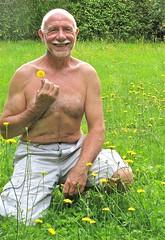 Dollon 653 (bernard-paris) Tags: fleur jardin pelouse mauvaiseherbe