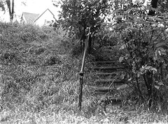 What Lies Beyond (mikesbiken) Tags: overgrown grass leaves stairs steps haunted railing crooked