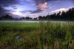 Evening mist (johanbe) Tags: sunset sky mist color nature fog landscape evening nikon heaven day foggy solnedgng dimma d90 eveningmist nikond90 skepplanda