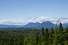 . (*Sabine*) Tags: canada mountains forest landscape woods britishcolumbia berge vancouverisland landschaft wald kanada radarhill pacificrimnp