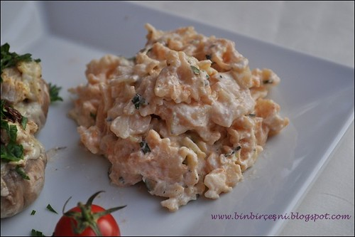 tavuklu mantar,cacıksoslu makarna (5)