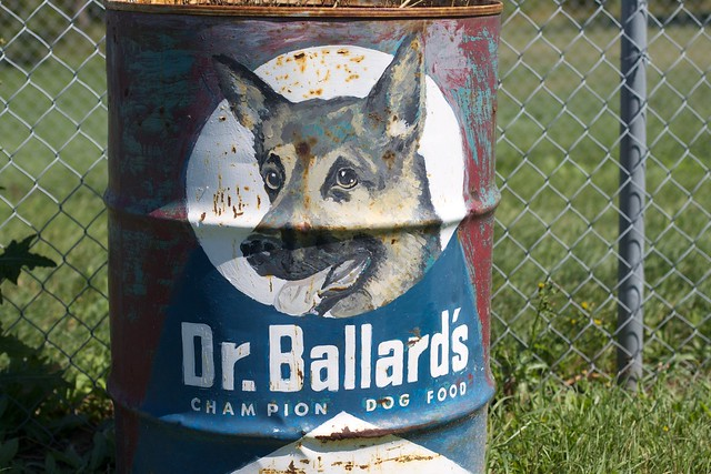 Dr Ballard Needs Better Dog Food Dishes