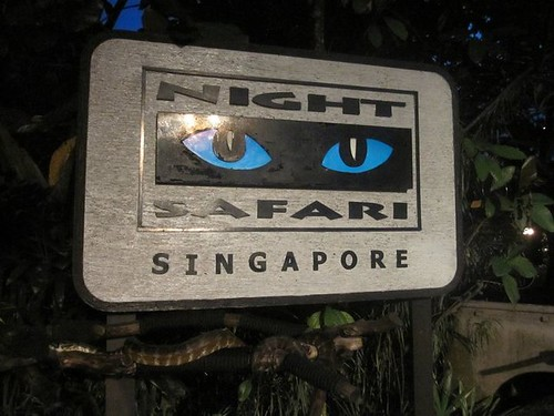 Night Safari