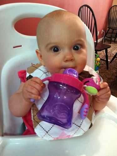 8 months sippy cup