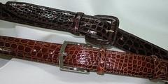Cintura Coccodrillo Fibbia ricoperta