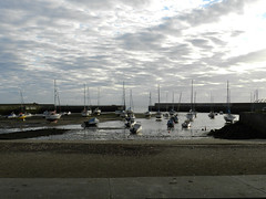 A Sunday morning in Bray harbour