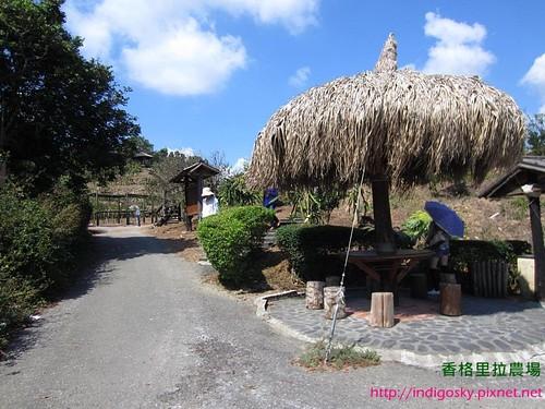 香格里拉農場137