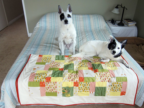 My first quilt_21