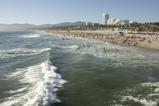 D1 santa monica beach waves