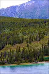 Klondike Highway - Emerald Lake - Landscape (blmiers2) Tags: travel mountain lake canada mountains nature alaska landscape nikon yukon emerald emeraldlake klondikehighway d3100 blm18 blmiers2