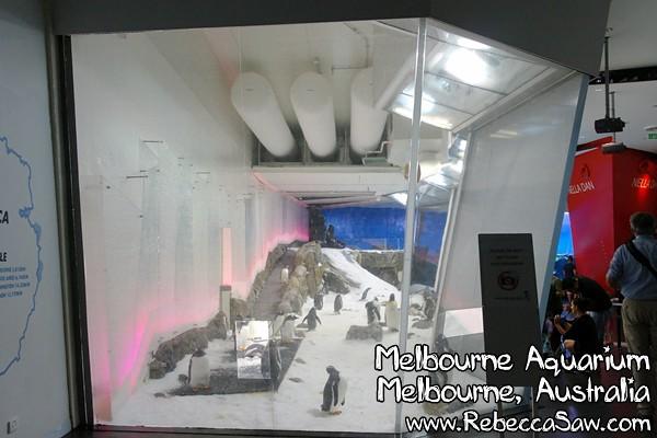 melbourne aquarium-10