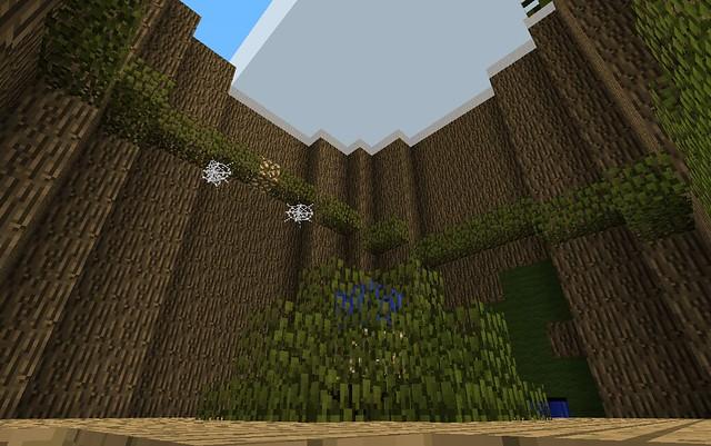 L'étage supérieur du tronc