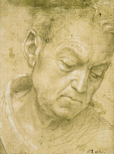 Filippino Lippi - Head of an old man  by petrus.agricola