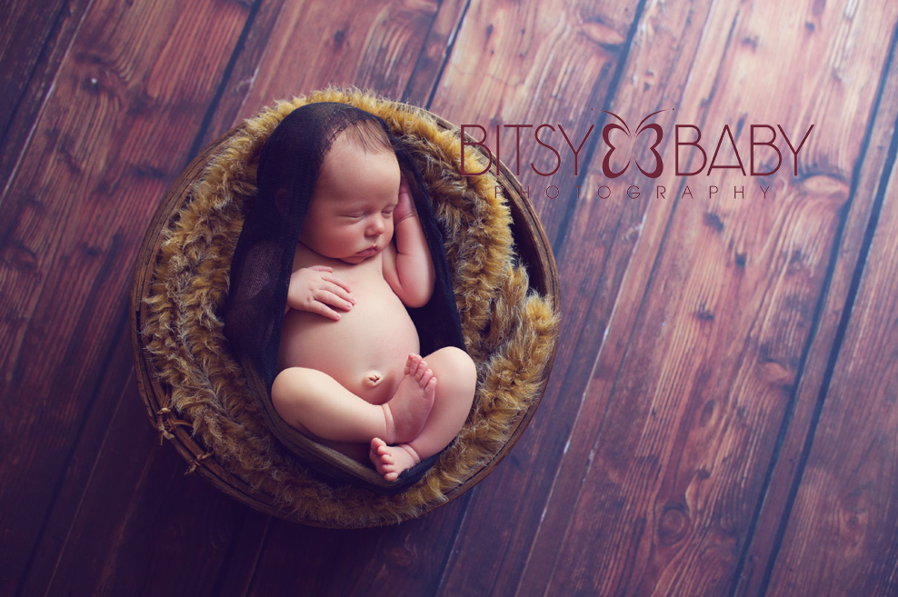 newborn photographers prop Brady
