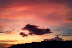 (d3sign) Tags: sunset sky cloud silhouette plane hongkong dusk aircraft sigma aeroplane dp2