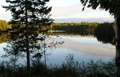 September 8, 2011 6 (asinglebeing) Tags: summer water river novascotia seasky sissiboo sissibooriver
