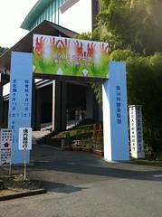 Gate of Cultural Festival