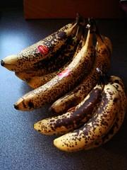 14 Bananas