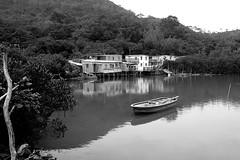 Tai O, Lantau Island, Hong Kong (Daryl Chapman Photography) Tags: old trees fish reflection green water birds canon hongkong boat fishing quiet village sigma 7d stilts lantauisland taio 1770mm