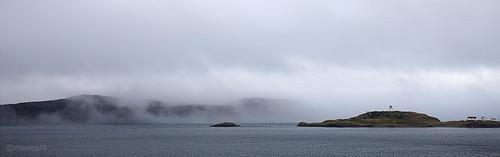 笼罩在雾色中