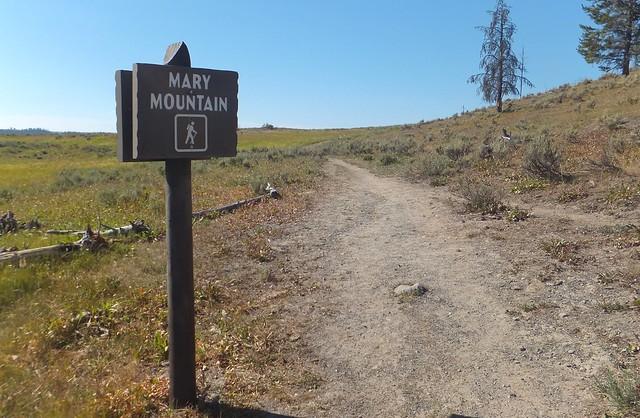 start Hayden Valley Trail