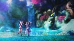 遠足記念:妖精の森