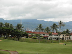 WAIKELE COUNTRY CLUB 100