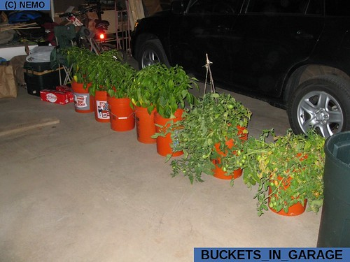 buckets_in_garage