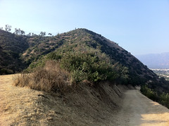 Beacon Hill, Griffith Park