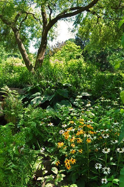 Pond Garden (6)