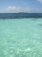 Mnemba Atoll (FarFlungTravels) Tags: africa sea fish swim tanzania underwater snorkel indianocean snorkeling zanzibar 2011 memba nmembaatoll mmemba