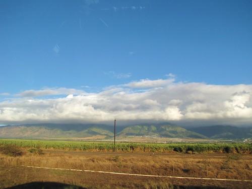 Maui Chiaki 012