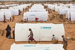 UNHCR News Story: UNHCR readies for transfer of Somali refugees to new camp areas (UNHCR) Tags: africa camp food news water tents kenya refugees families aid health drought infrastructure conflict arrival ethiopia shelter emergency information protection assistance unhcr somalia famine hornofafrica newsstory refugeecamp idps measles worldhealthorganization internallydisplacedpeople medicalhelp healthworkers dadaab forceddisplacement somalirefugees iforefugeecamp unrefugeeagency humanitarianworkers unitednationshighcommissionerforrefugees humanitariancrises hagaderarefugeecamp forciblydisplaced theinternationalorganizationformigration theunchildrensfund dolloado kobecamp hilaweyncamp kambiooscamp ifoextensions dagahaleyrefugeecamp mdecinssansfrontiresspain mdecinssansfrontiresholland