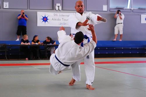 6050255247 5f893b2901 9th International Aikido Tournament