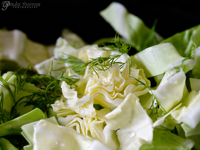 Cabbage and Dill