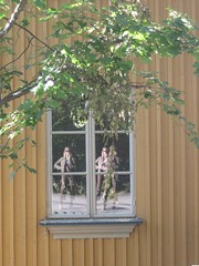 in & out of the house (Ladybadtiming) Tags: urban house selfportrait reflection tree me yellow finland wooden helsinki holidays graphic sunny inout multiply onehanded kpyl wiondow
