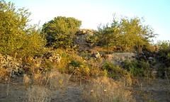 Nuraghe Porcarzos (cristianocani) Tags: sardegna italia archeology nuraghe archeologia megalitismo borore civiltnuragica