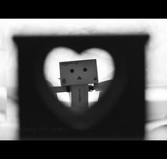 My heart (Ckopsy_Photography) Tags: love sex canon toys eos 50mm flickr heart bokeh explorer coeur amour 7d lover f18 18 figurine japon jouet boite danbo amazoncojp revoltech danboard