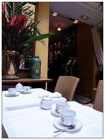 MF茶館5