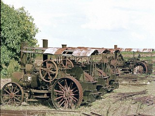 Fowler traction engines at Marromeu