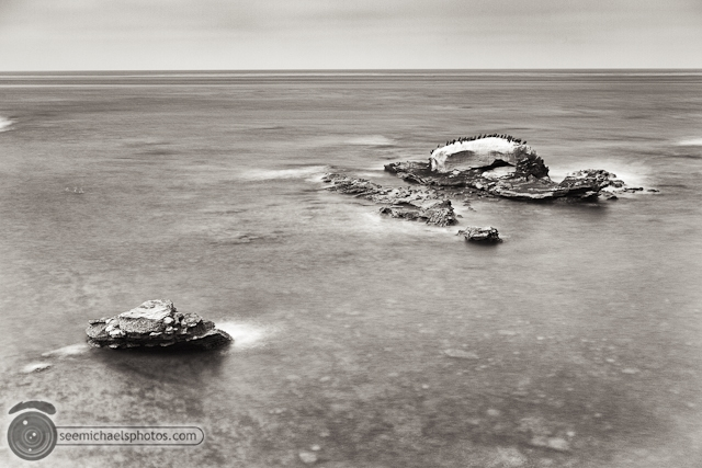 Bird Rock 82311 © Michael Klayman-007