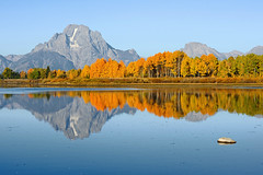 Oxbow Bend (bhophotos) Tags: travel autumn trees usa mountain reflection nature colors yellow river landscape geotagged golden nationalpark nikon day clear snakeriver wyoming np nikkor aspen tetons jacksonhole grandtetonnationalpark gtnp oxbowbend mtmoran 80200mmf28dnew d700 projectweather bivouacpeak pwfall