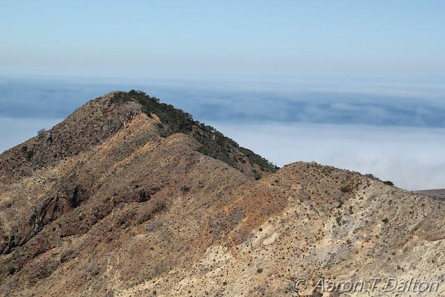 Half Bare Ridge