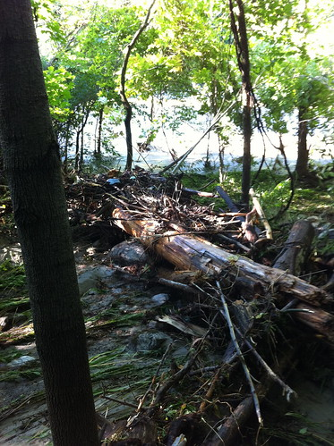 Flood Debris, Middlebury River